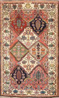 100% Vegetable Dye Bakhtiari Persian Area Rug 4x5